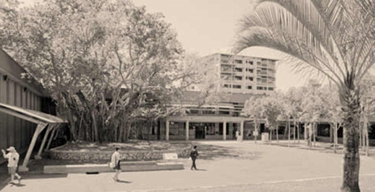 feature_City of Darwin
